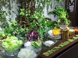 創業大正十五年 蓼科 親湯温泉:【ご朝食 蓼科 山ごはん】高原Sunny Salad Bar:フレッシュお野菜をちょこっとずつ