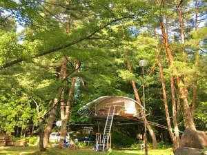 民宿朝日屋:*新感覚ツリードーム「Dom'Up」沼沢湖キャンプ場に設置!当館からご予約可能です!
