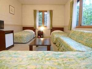白樺湖 コロニアルハウス:客室・3~4名【ソファーベット×1】