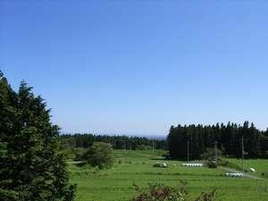 ペンション シャローム:洋室から見た草原
