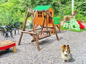 北軽井沢ブルーベリーYGH:400坪の庭に遊具