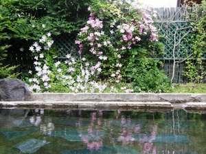 ゲストハウス てぃんくる:家族風呂の露天風呂と咲き誇る花々