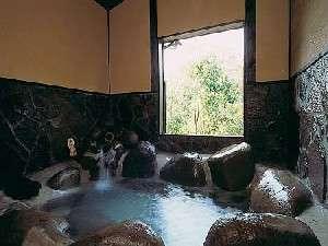 木立の中の宿 清流荘:誰にも気兼ねせず、源泉100%の温泉を堪能しよう!