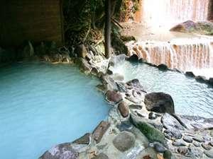 旅館 山林閣:滝の音とマイナスイオン満載の露天風呂