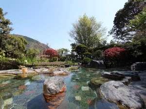 箱根湯本温泉 湯さか荘:解放感あふれる庭園露天