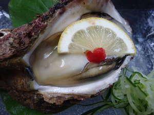 かに・荒磯料理 志麻:夏期限定岩ガキ◆一粒一粒が大きく、濃厚な味は、もう絶品です♪