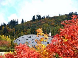 富山県 立山荘の写真