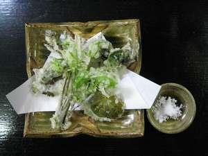 民宿 割烹 松園:山菜の天ぷら