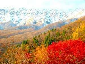 大山の四季の詩 ペンション アリスの丘