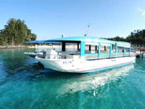 かりゆしビーチのグラスボートで海中を泳ぐ熱帯魚を観察♪