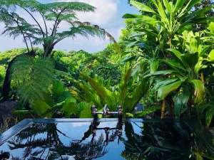 さんにんリゾート:野趣あふれる貸切露天風呂(日中のプール利用もできます)