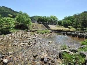 多々良木フォレストリゾートCoCoDe:施設前 川
