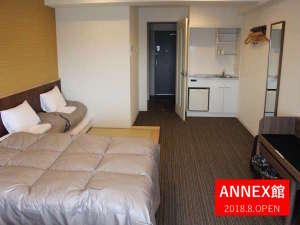 ザ・ベース・堺東・アパートメントホテル:【 ANNEX館】お部屋奥から見たお部屋。荷物をどーんと広げられます♪