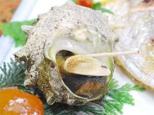 越前 浜茄子:浜茄子自慢の海の幸をどうぞ。