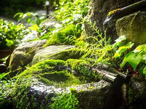 湯布院温泉 ひすいの宿 黎明(れいめい)