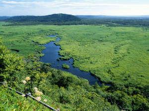 くしろ湿原パーク憩の家 かや沼:【コッタロ展望台】原生的な自然を楽しめる展望台。運がよければタンチョウを見ることもできます。