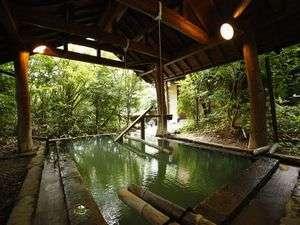 ふもと旅館別邸 こうの湯:不思議な浮遊感を楽しめる「森の湯」女湯の立湯は深さ130センチ
