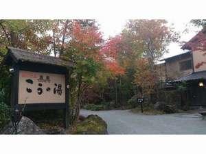 紅葉の季節、黒川温泉で堪能ください