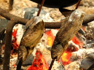 大内宿 本家扇屋:囲炉裏でじっくりと焼き上げるアユは頭から食べられます。
