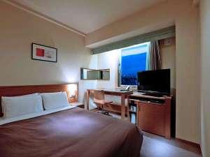 CANDEO HOTELS (カンデオホテルズ)上野公園:スタンダードダブル-16㎡