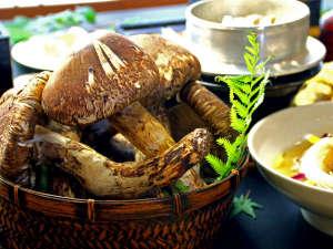 王地山公園 ささやま荘:松茸づくしのおもてなし♪
