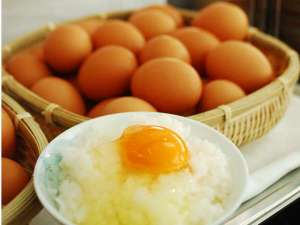 三河湾リゾートリンクス:地元産たまご「ランニングエッグ」濃厚味のたまごご賞味あれ!