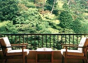 首都圏に近い秘湯 明賀屋(みょうがや)本館:<お部屋お写真一例>お部屋からの眺めをこゆっくりお楽しみください。