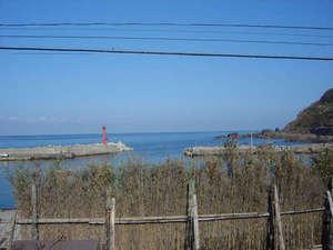 間垣の里 田中屋旅館:景色:前には間垣、後ろには海が眺められます。