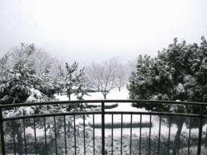 客室のベランダから見る冬の景色