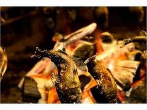囲炉裏で焼くヤマメの塩焼き