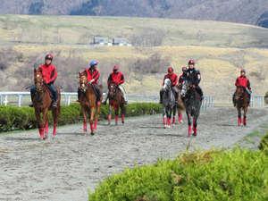 うらかわ優駿ビレッジAERU(アエル):調教中の馬たち。騎手の方々もステキです♪