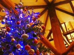 Real country inn Speak Easy:【毎年大好評♪本物もみの木ツリー】12月上旬~12/25頃まで館内はクリスマスモードになります