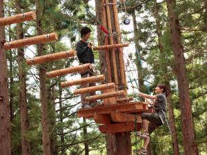 奥白馬温泉 ホテルグリーンプラザ白馬:★森の中、樹木の高所でスリリングな体験を満喫『コルチナ・アドベンチャーランド』