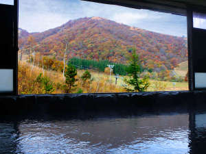 奥白馬温泉 ホテルグリーンプラザ白馬:★秋の紅葉が美しい展望風呂!!山々が色づきだした四季の移ろいを感じてください◎