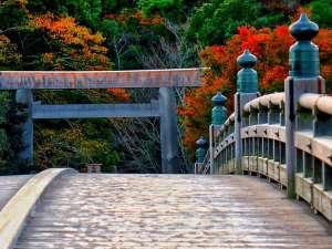 伊勢神宮の紅葉11月下旬~12月上旬が見頃です