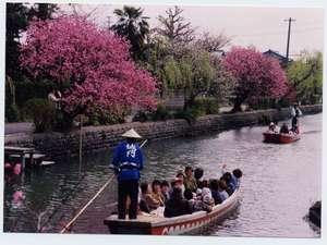 ホテル輝泉荘:柳川名物川下り/ 春の風景
