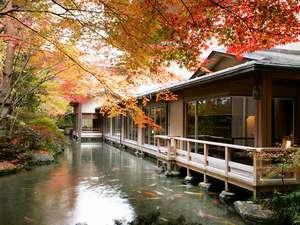 下呂温泉 水明館:館内で紅葉をお楽しみいただけます