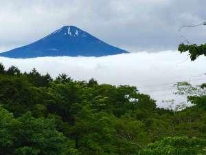 川涌の湯 マウントビュー箱根:新緑の中の富士山。この絶景ポイントまで車で5分