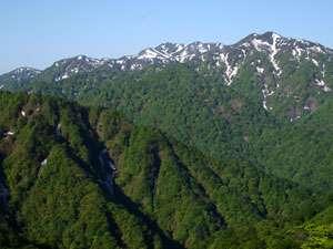 ウェスパ椿山