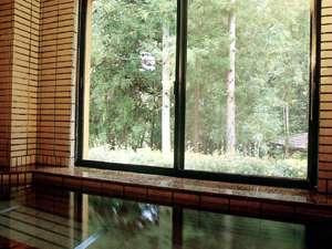 旅館 みゆき:緑の木々を眺めながら天然温泉満喫!