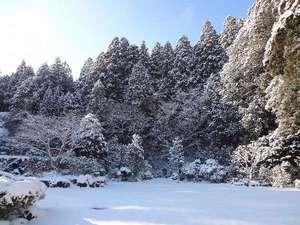 宿坊 萱堂 上池院(しゅくぼう かやどう じょうちいん):雪景色の庭
