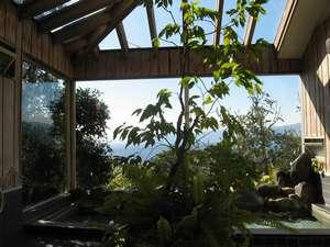 ペンション真鶴:天窓から陽光が差し込む展望岩風呂