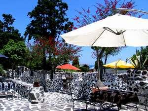 天然温泉付き海の見える宿 J-Garden(ジェイガーデン):様々な花に囲まれたガーデンでお茶でもいかが?