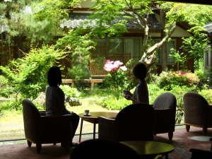上諏訪温泉 油屋旅館 諏訪湖を望む絶景露天の宿:庭園を眺めながらフリードリンクをおたのしみください