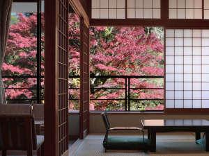 雨情の宿 新つた:秋の福寿館客室例
