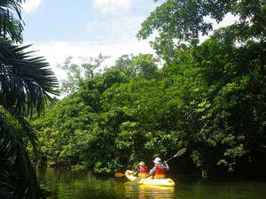 西表島ジャングルホテルパイヌマヤ:*カヌーツアー/ユツン川のジャングルを行く人気のツアー!!