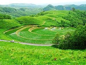 山荘 四季眺:美しい扇田(棚田)は、『ハイジの丘』のすぐ近くです