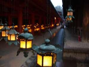 当館より徒歩10分春日大社万灯籠節分万灯籠と中元万灯籠があり約3,000基の灯籠に明かりが灯されます。