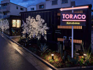 Toraco Konohanaの写真