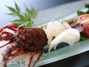 鎌倉パークホテル:伊勢海老の刺身
